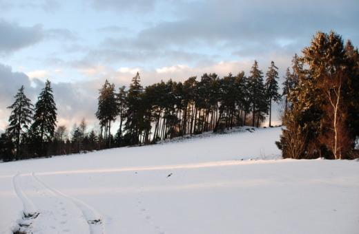 Steinberg in the winter sun