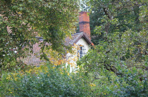 Old house, hidden behind the trees