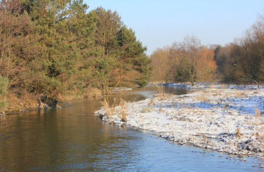 Innerste river in winter