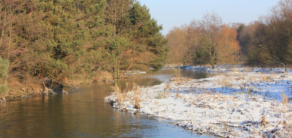 Innerste river in winter