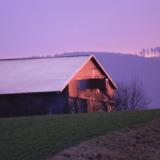 Purple sundown