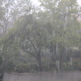 Absolutely pouring rain