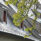 Classic German slate roof of Großes Heiliges Kreuz in Goslar