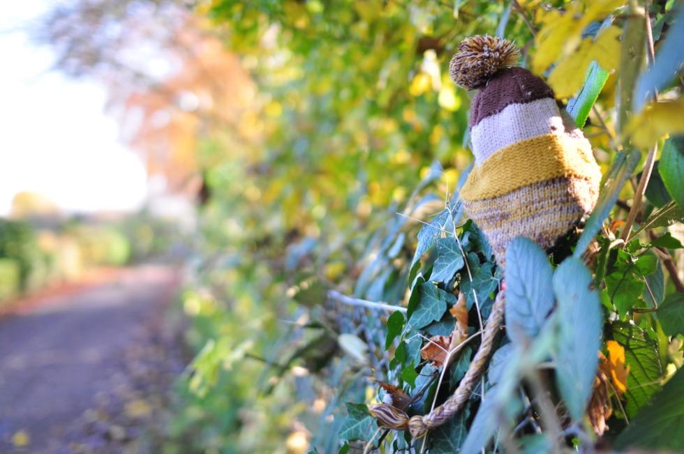 Knit cap on a fence