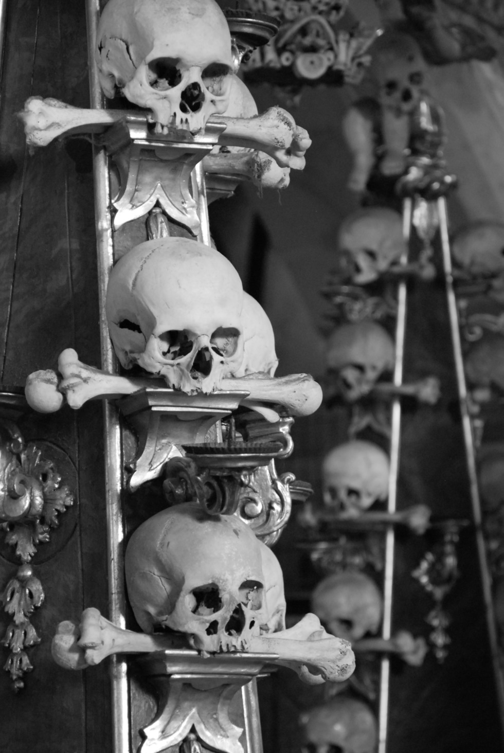 Stapled skulls
