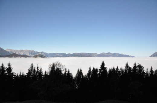 View on to the cloud ceiling from Jenner mountain