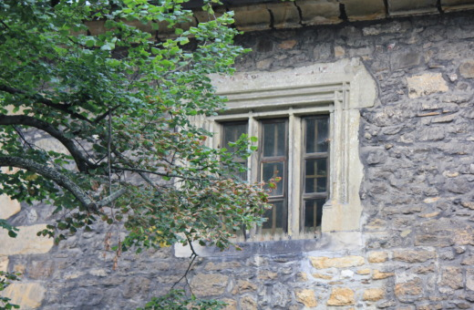 Historical window in stonehouse behind a tree