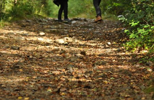 Hiker's feet on forest floor