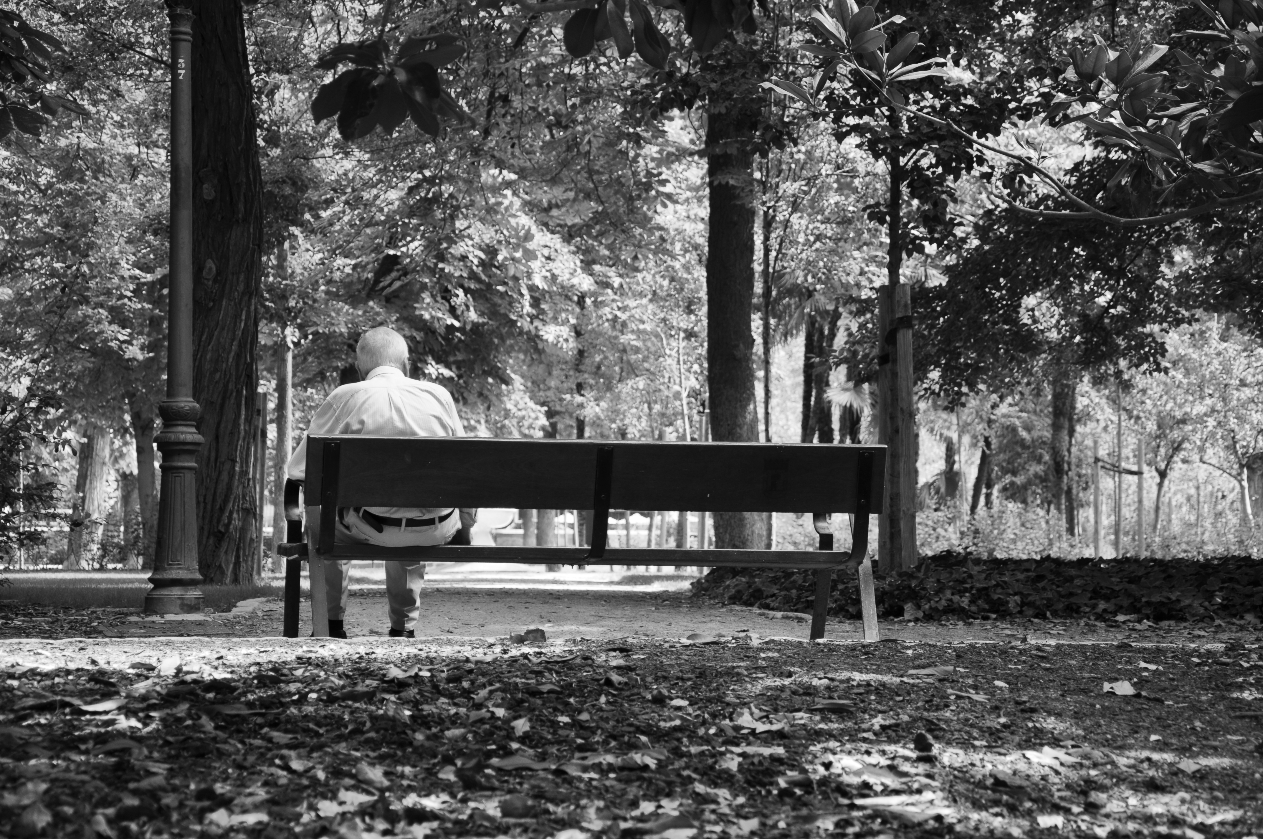 Old Man Sitting Alone On A Bench Cc0 Photo