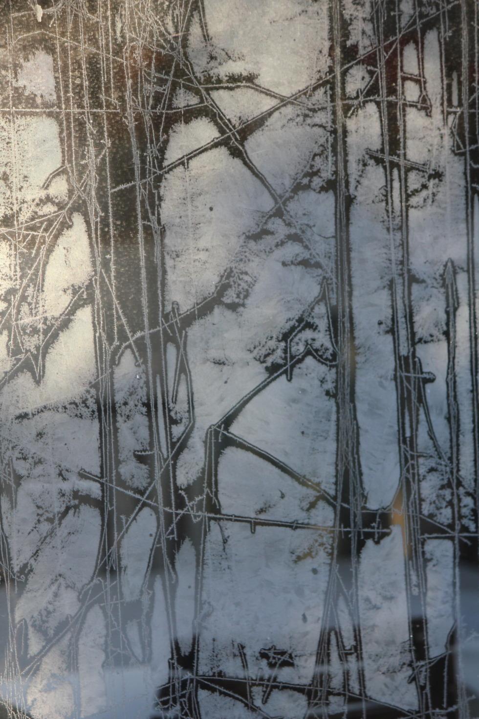 Frost flowers on a window