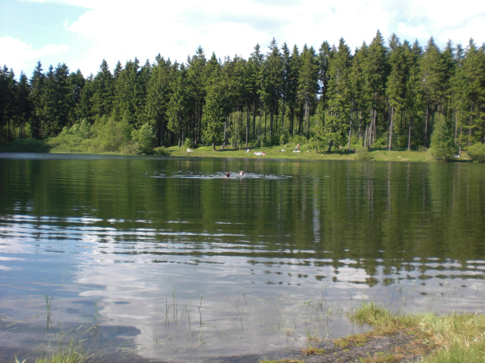 Schröterbacher pond in the Harz mountains