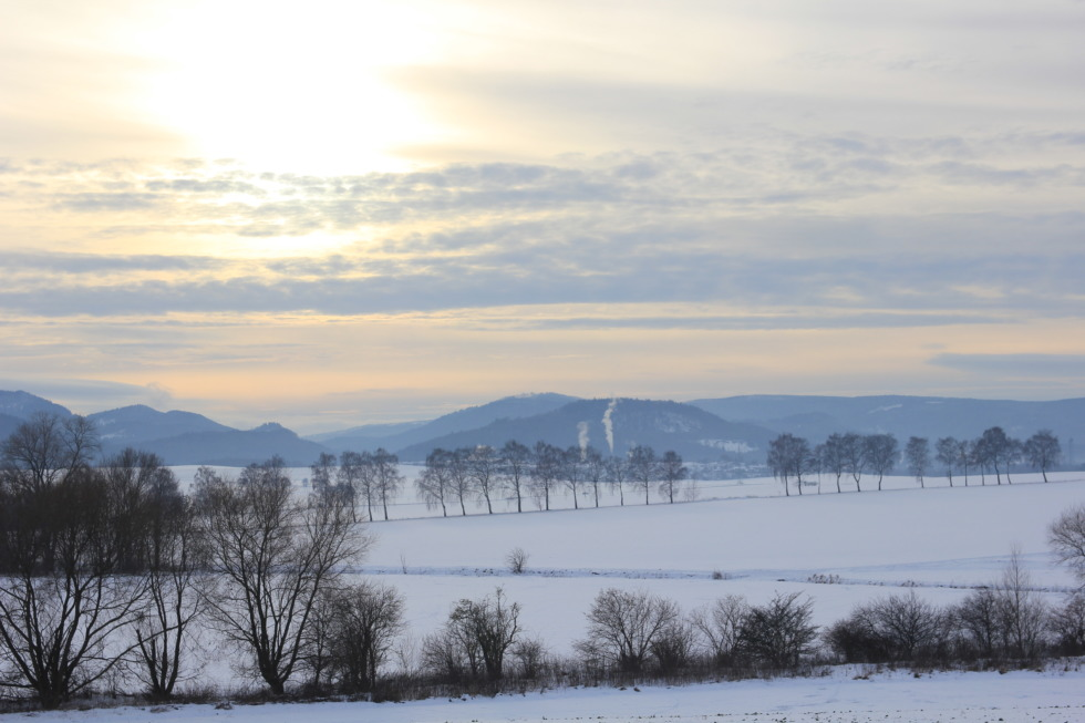Snowy fields in front of the Harz mountains