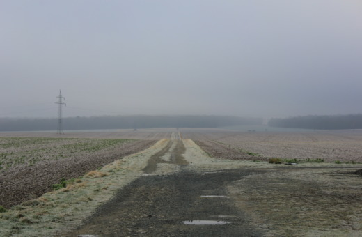 Foggy fields around Goslar
