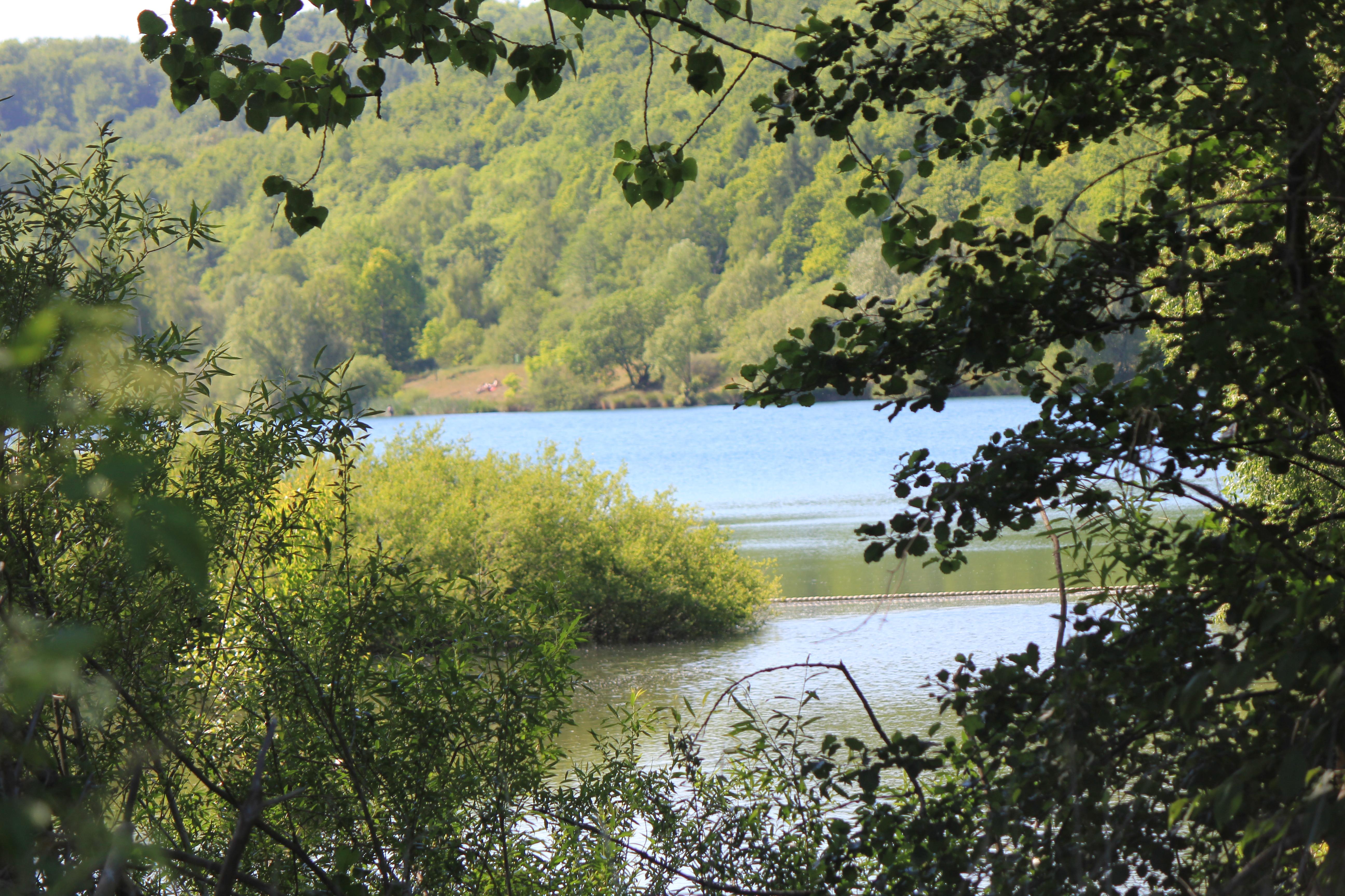 View Through The Trees Onto Lake Near Goslar Cc0 Photo