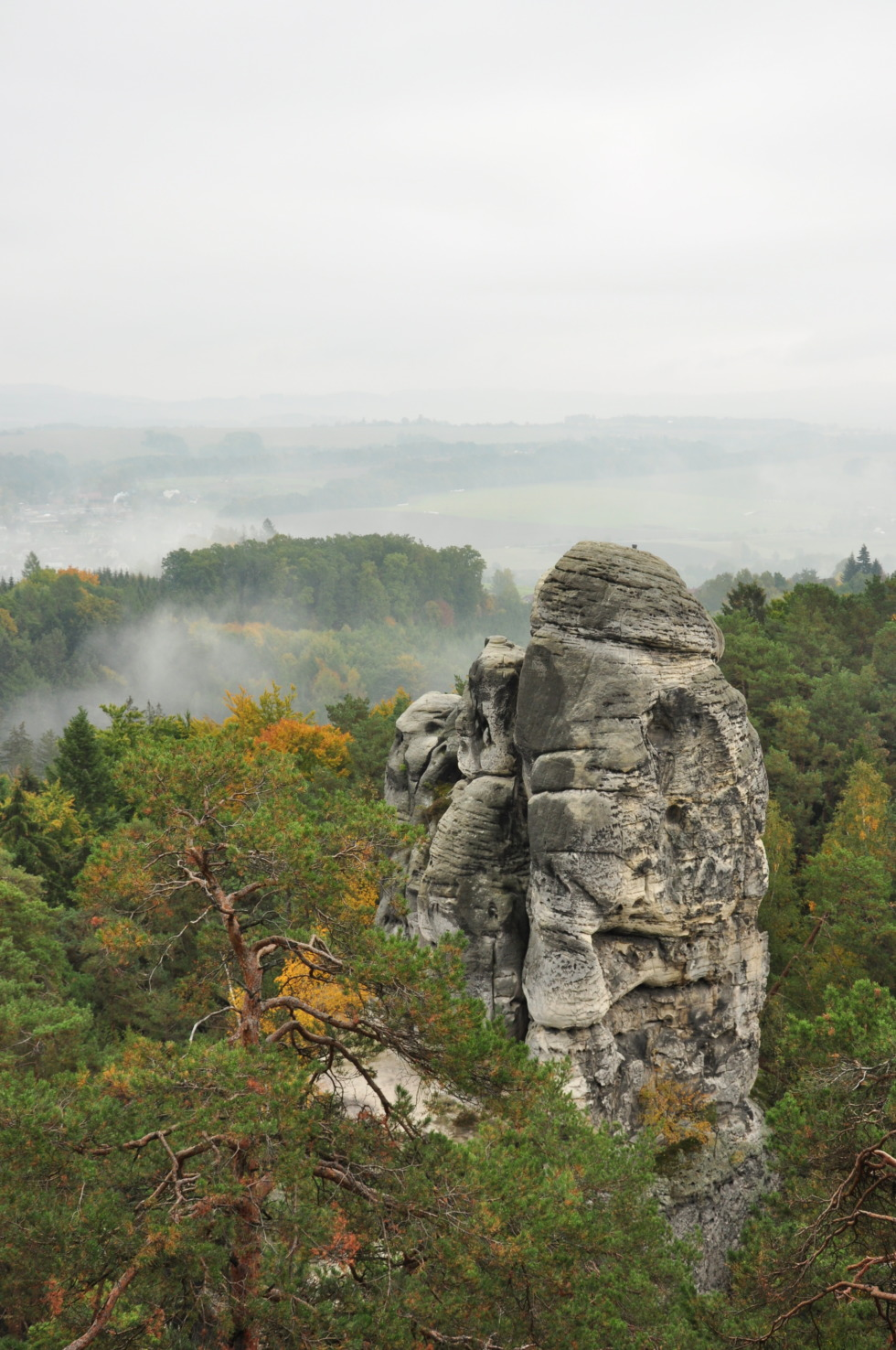 Single rock in bohemian paradise