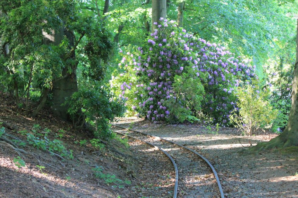 Small railway in Gruga Park in Essen